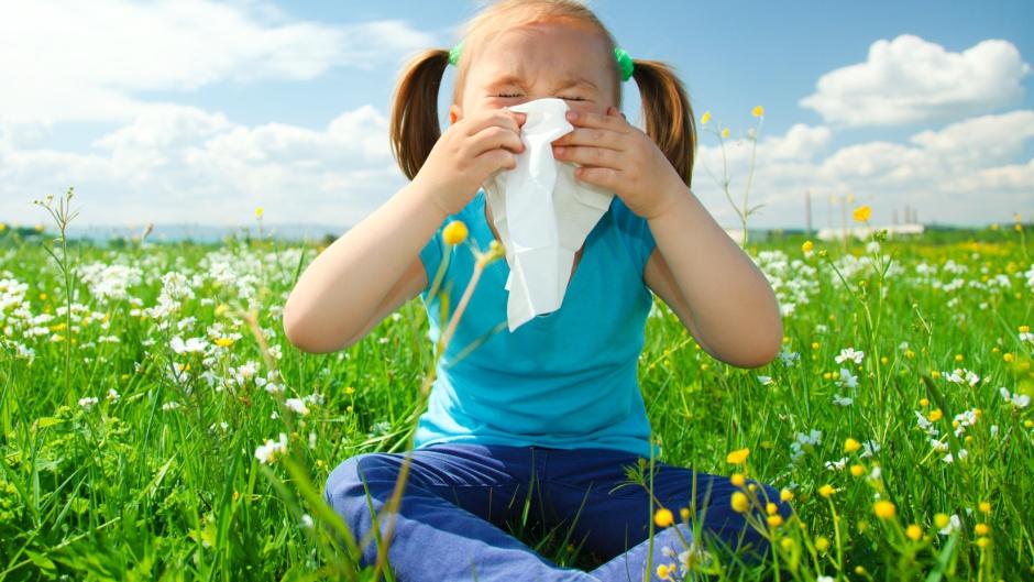 Allergia vagy nátha? Allergiás nátha is lehet a válasz